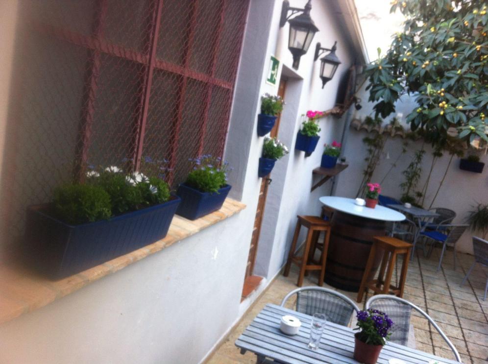 patio nuevo